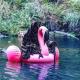 Смерть с косой напоминает в Новой Зеландии: будьте осторожны в воде!