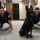 Пес, который отжимается с полицейскими, стал героем сети
