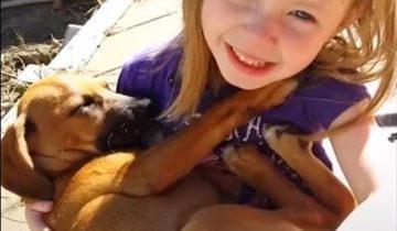 Малышка поет колыбельную щенку, который только пришел в семью