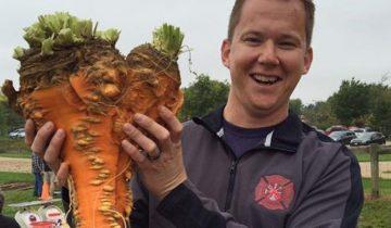 Садовод-любитель вырастил самую большую морковь в мире