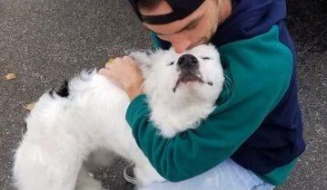 Собака страдала от страшного кожного недуга, но как и все хотела любви