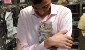 Котенок выбрал себе хозяина, запрыгнул к нему на руки и заглянул в глаза
