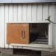 Финн открыл мини-отель… в собачьей будке