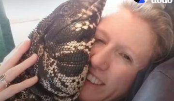 Самая разбалованная ящерица в мире обожает обнимашки