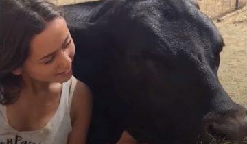 Ей 16, и она творит невероятные вещи ради спасения животных