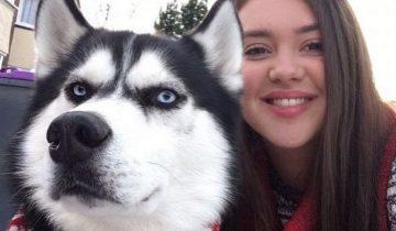 Она решила сделать рождественскую открытку с любимой собакой