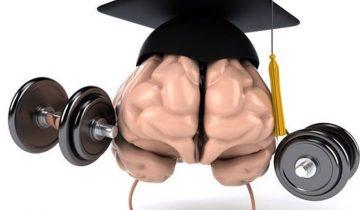 5 крутейших тренажеров для мозга