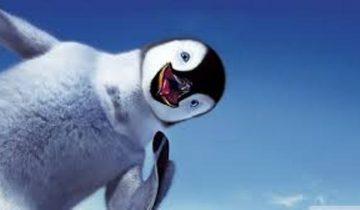 Что будет, если пощекотать милого пингвиненка?
