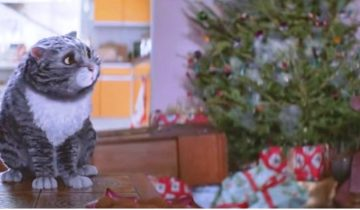 Короткометражка про кота и Рождество стала хитом