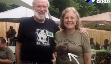 Эта невероятная пара спасла больше 100 собак