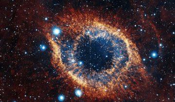 Ученые бьют тревогу: человек может больше не полететь в космос