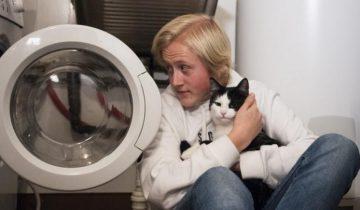 В Норвегии кот перенес 40-минутную стирку