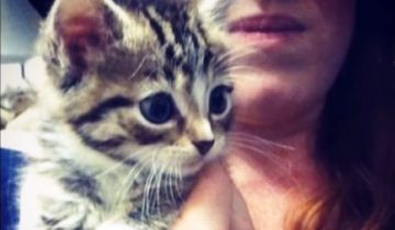 Бездомную кошечку спасла добрая женщина. А та благодарит за любовь