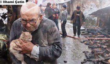 Дом 83-летнего старика сгорел дотла. Но больше всего он переживал о котенке