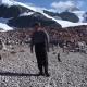 Американский актер пообещал станцевать с пингвинами за 200 тыс. лайков под постом