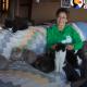 У нее дома живут сотни котов — кошачья мама, которой нет конкурентов
