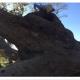 Рабочие приехали к поваленному 200-летнему дереву. Но какой сюрприз их ждал в дупле!