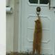 Котики, которых поймали в самый интересный момент