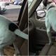 Собака, которая запрыгнула в окно авто к хозяину, собрала больше 9 млн просмотров