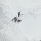 Рабочие спасли собаку, которая залезла на крышу Укрытия-2 в Чернобыле