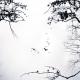 Потрясающие оптические иллюзии, от которых невозможно оторваться
