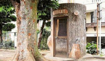 Японский фотограф создал страницу в Инстаграм для… общественных туалетов