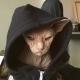 Знакомьтесь, это Локи! Самый суровый кот на свете