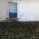 Ради наживы двухэтажный дом превратили в ад для черепах