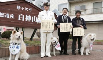 В Японии начальником ж/д вокзала стал… бездомный пес