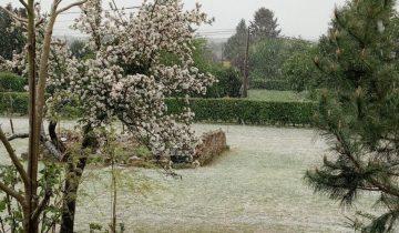 Францию занесло снегом к 1 мая