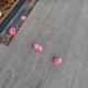 Девушка стала находить цветы на террасе от неизвестного поклонника