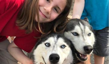 Мальчик создал страницу в Твиттере, чтобы выкладывать фото собак