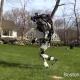 Робот вышел на пробежку: даже «железяки» дышат свежим воздухом