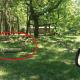 Французские туристы решили сделать селфи в сафари-парке перед стаей гепардов