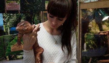 Хозяйки больших ящериц ходят с ними на свидания