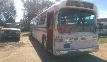 Женщина потратила 3 года, чтобы превратить старый автобус в дом на колесах