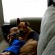 Когда в доме болеет малыш: пес поддерживает кроху