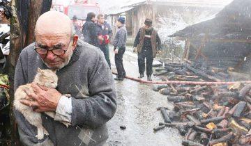 Старик обнимает выжившего котенка, все, что у него осталось после пожара