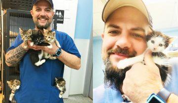 Каждое утро он находит корзинку котят и творит настоящие чудеса…Ветеринар от Бога!