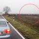 Стадо оленей появилось посреди безлюдного шоссе. Этот день случайные наблюдатели запомнят надолго!