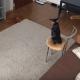 Когда хозяйка сняла то, чем занимается собака в ее отсутствие, то прослезилась!