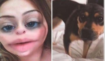 Наутро после бурной вечеринка девушка проснулась с краденой собакой в постели