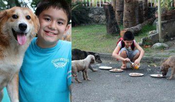 Мальчик тратил все карманные деньги на покупку корма для бездомных животных