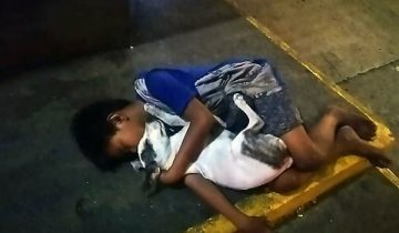 Фото филиппинского мальчика, спящего с собакой на улице, растрогало весь мир
