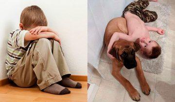 Настоящая дружба: родители наказали мальчика за шалости, а верный пес не бросил его