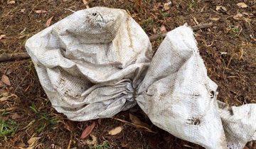 Женщина обнаружила грязный мешок, который изменил ее жизнь