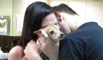 Семья рыдала, держа на руках худую собаку, которая потерялась шесть лет назад. А ведь песик их вспомнил