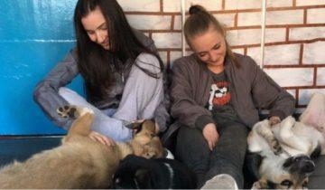Хрупкие девушки отчаянно боролись за детскую мечту! Они спасли десятки животных…