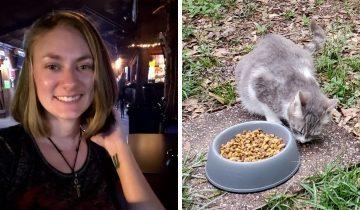 Девушка завоевала доверие бездомной кошки и та поделилась с ней секретом — познакомила с котятами
