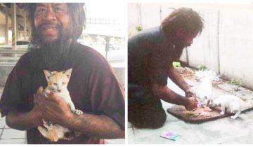 Бездомный мужчина каждый день кормит уличных кошек, при том, что сам порой голодает